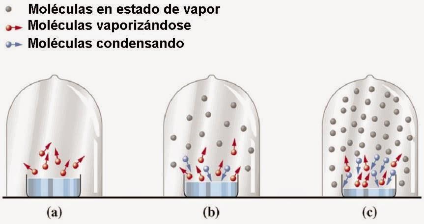Presión del líquido