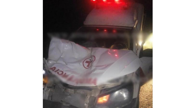 Cavalo solto na pista provoca acidente com ambulância de Amargosa