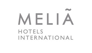 Job Opportunity at Melia Serengeti, Assistant Financial Controller