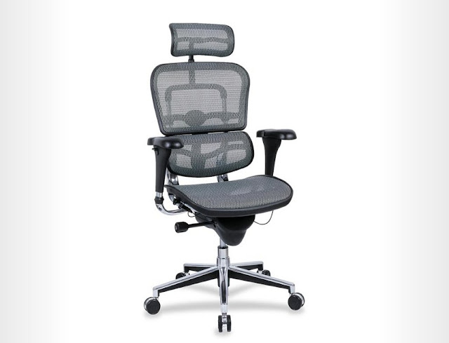 best buy ergonomic office chair scoliosis for sale