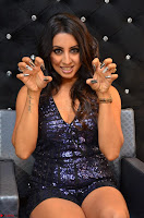 Sanjjana at her best expressions as aggresive cat   beautiful Actress Sanjjana Exclusive Pics 050.JPG