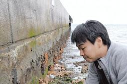 1000匹のオニヒトデが石垣の海岸に打ち上げられる