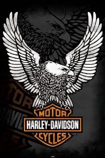 Suzuki   Kawasaki   Harley Davidson: Harley Davidson Eagle ...