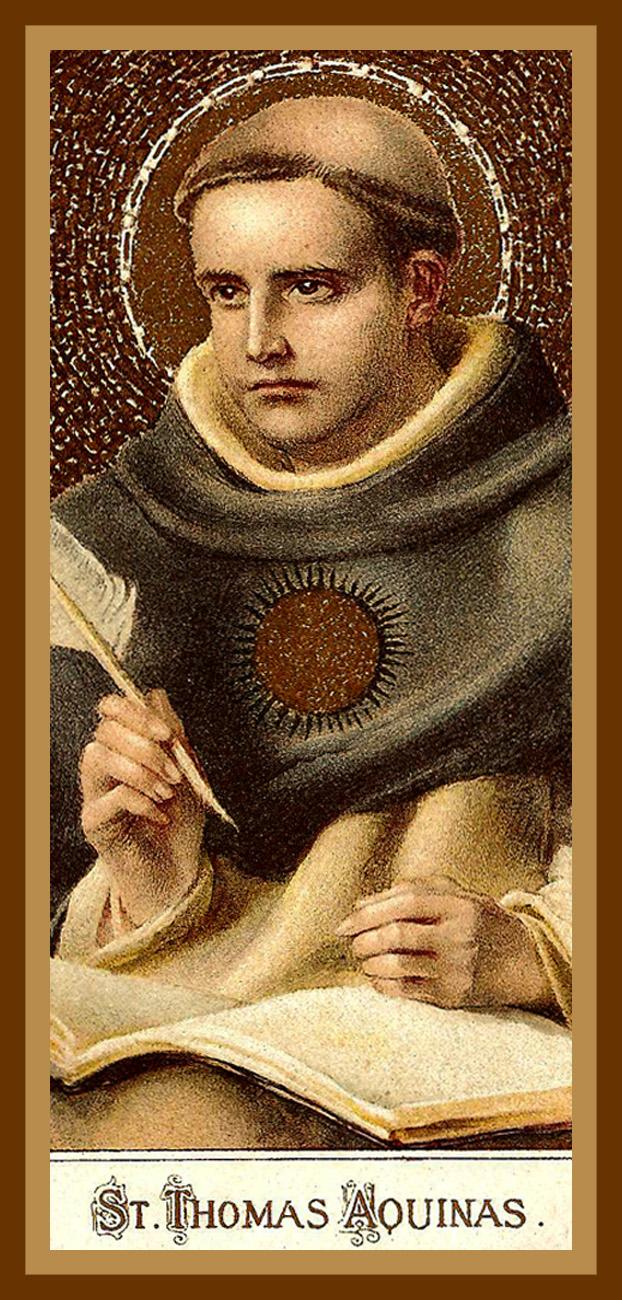 saint thomas catholic single men Men's group sign up for men's group  indicates required field name   st thomas the apostle catholic church | 272 king street, crystal lake, il 60014 | 815-455 .