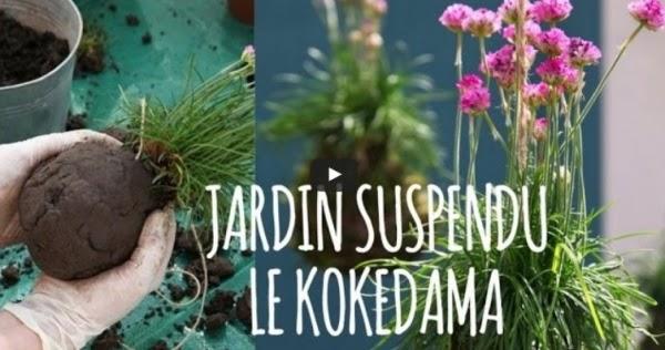 diy d co jardin comment faire un kokedama plante suspendre doc jean no. Black Bedroom Furniture Sets. Home Design Ideas