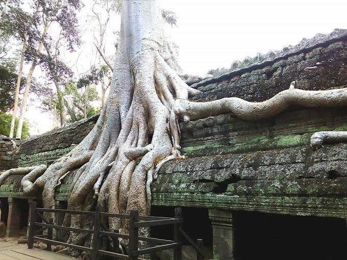 Visite Angkor en 4 jours - Kbal Spean et Beng Mealea