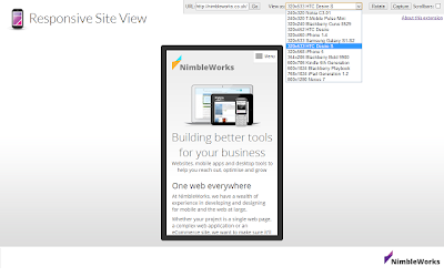 Responsive Site View
