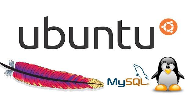 Ubuntu  LAMP Server ( Apache + MySQL + PHP5 )