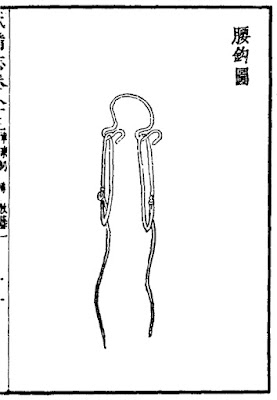 Ming Dynasty belt-hook spanning device