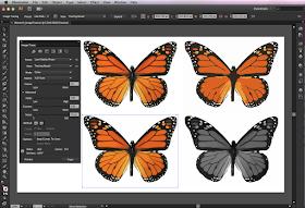 Chia sẻ toàn bộ giáo trình tự học Adobe Illustrator và Lightroom (CS6-CC)