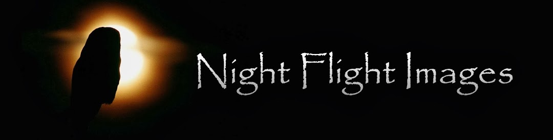 Night Flight Images