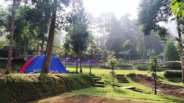d'jungle private camp bogor