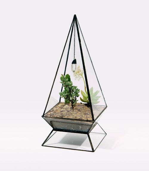 Hermosos terrario o mini jardines de vidrio.