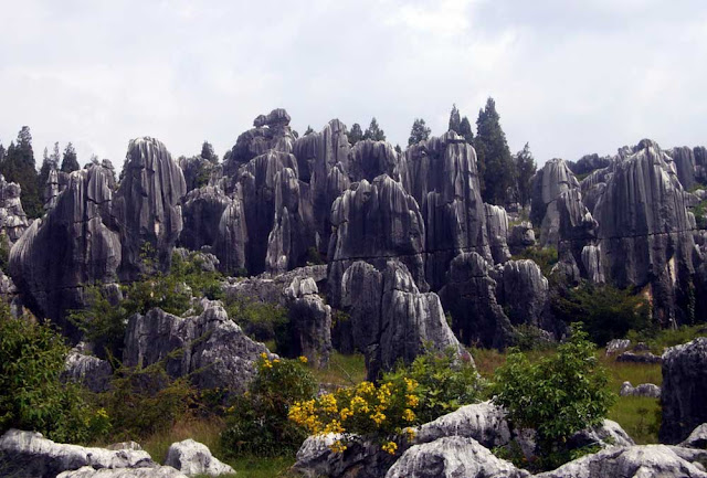 O Bosque de Pedra de Shilin – China