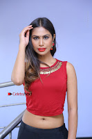 Telugu Actress Nishi Ganda Stills in Red Blouse and Black Skirt at Tik Tak Telugu Movie Audio Launch .COM 0245.JPG