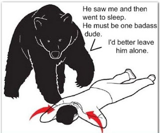 bear attack sleep