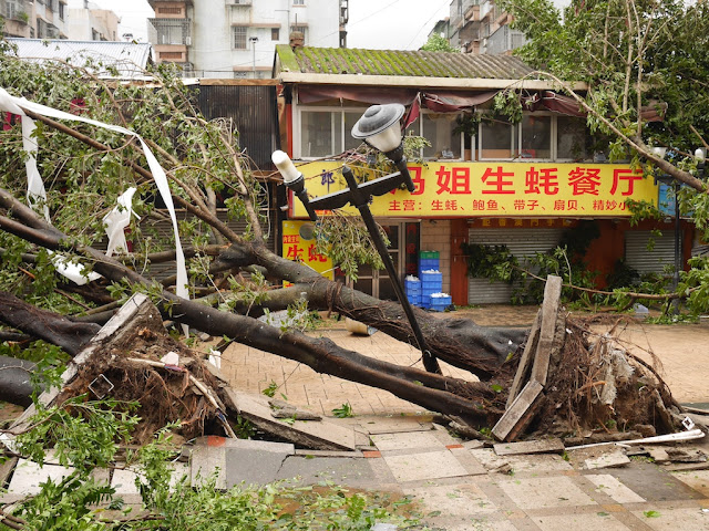 "damage from Typhoon Hato (台风""天鸽"") at the Lianhua Road Pedestrian Street in Zhuhai, China"
