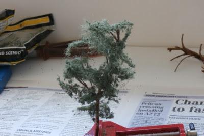 Svanda trees