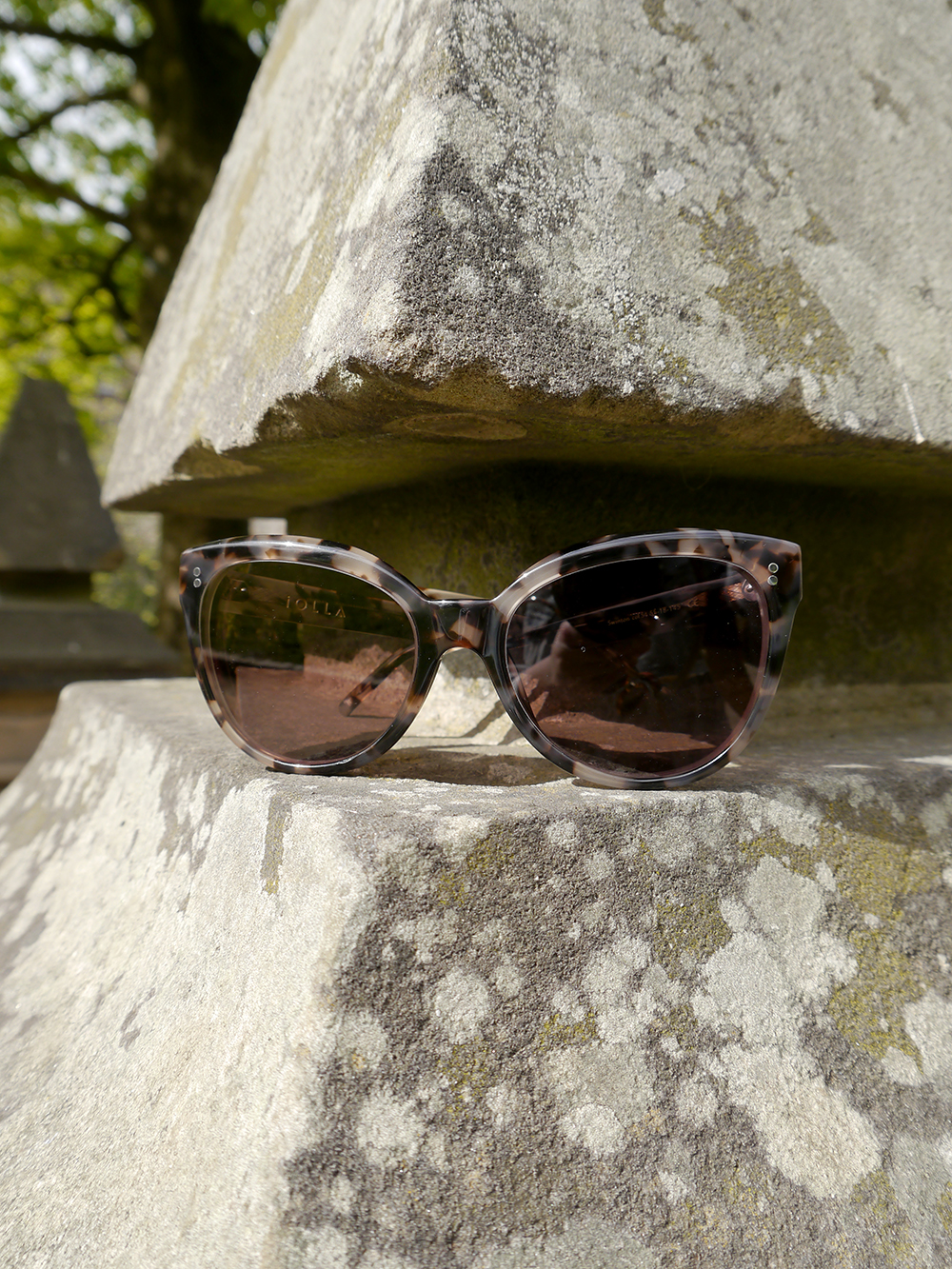 IOLLA Swinton tortoise shell sunglasses, IOLLA glasses, photoshoot in Stockbridge, oversized tortoishell catseye sunglasses