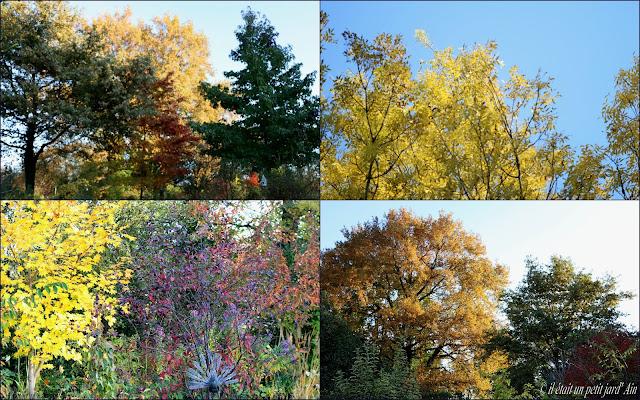 couleurs du jardin en automne