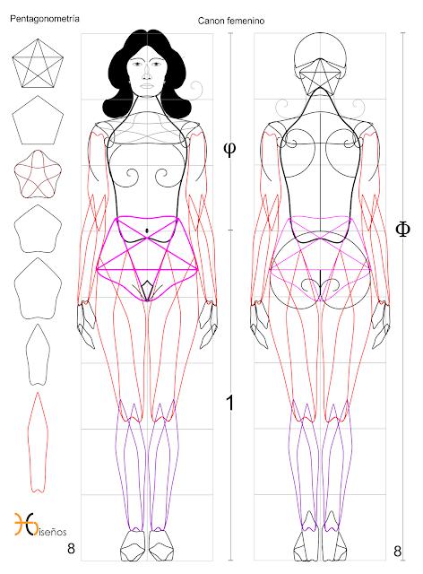 Cuerpo humano,ocho cabezas