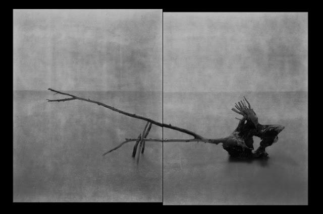 """Laurent Millet """"Le Bestiaire"""", 2005"""