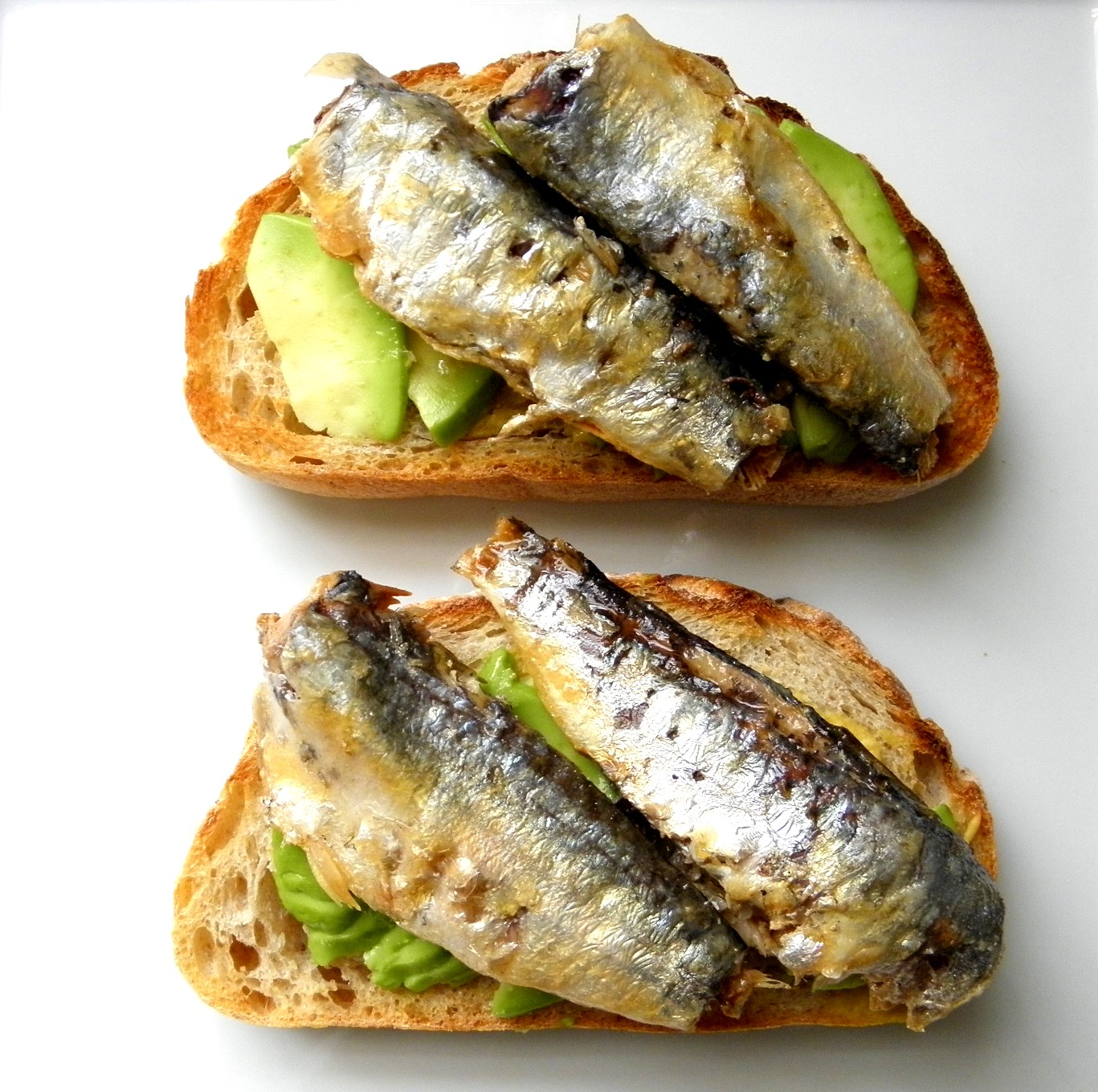 Canned Sardines: My New Favorite Food