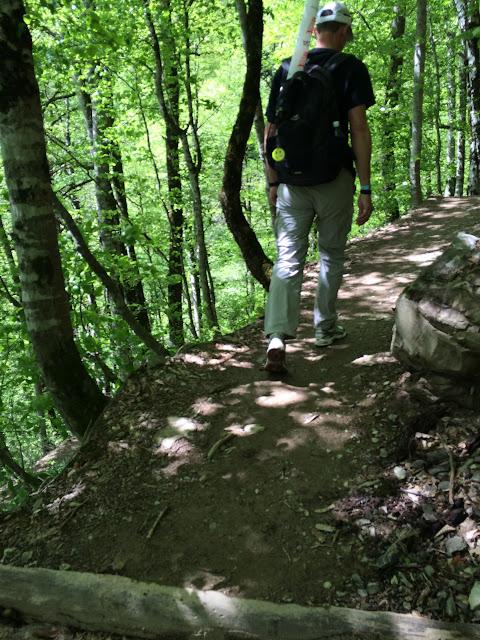 Тропа здоровья на Розе Хутор, Сочи, Красная поляна