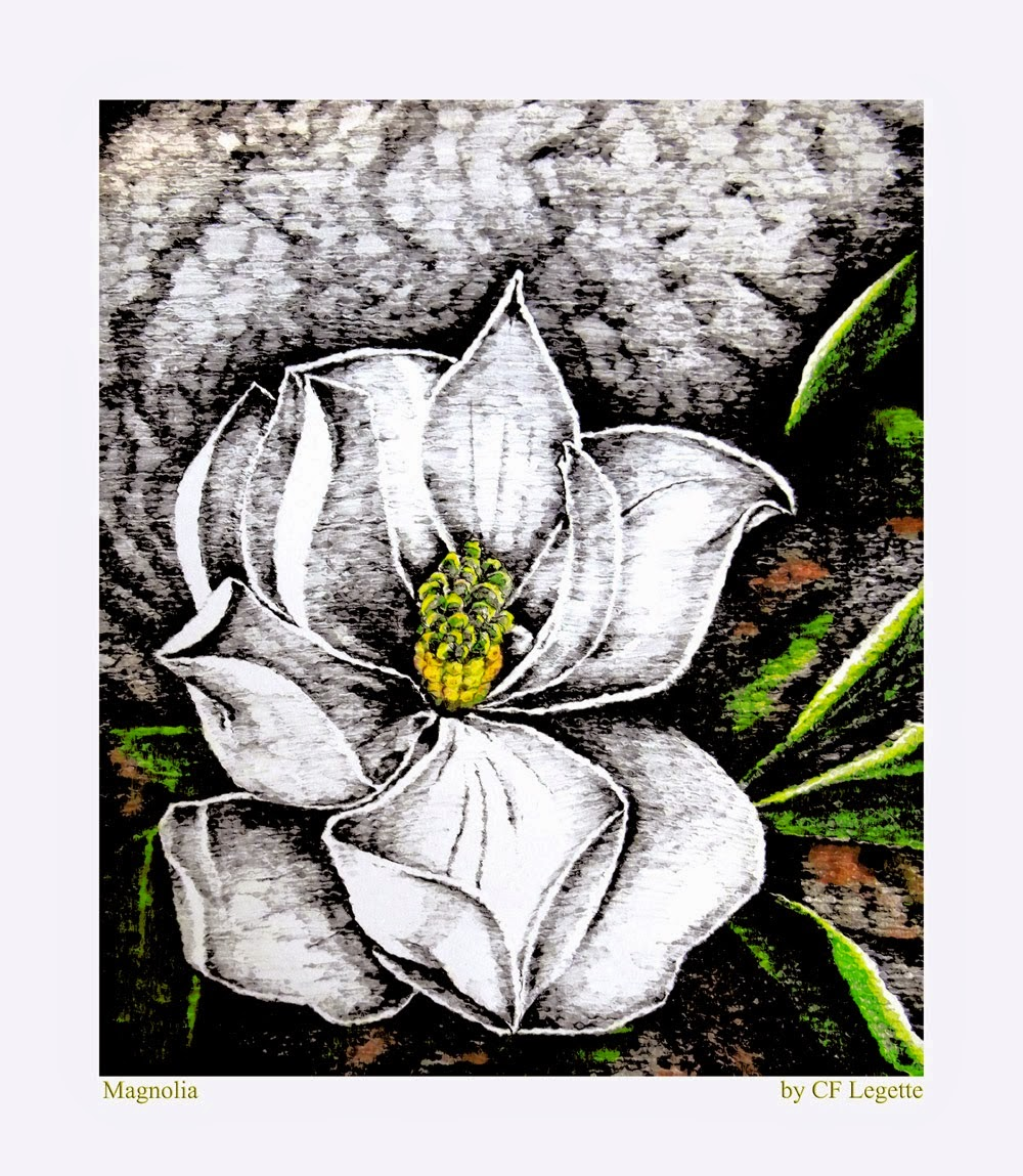 http://fineartamerica.com/featured/magnolia-c-f-legette.html