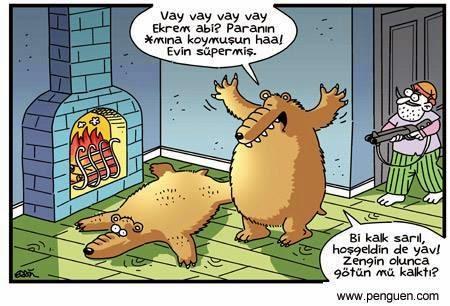 ayı ve avcı karikatürü