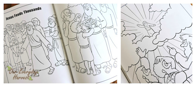 Beginners Bible Coloring Book Eggcellent Easter Giveaway Zonderkidz Our Everyday