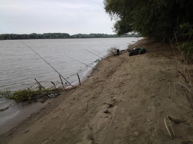 pescar din barca