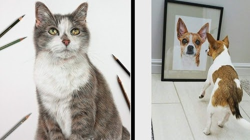 00-Angie-Cats-Dogs-and-an-Owl-Pencil-Drawings-www-designstack-co