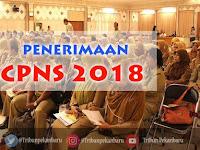 Honorer K2 Boleh Ikut Seleksi CPNS 2018. Tapi Ini Syaratnya...