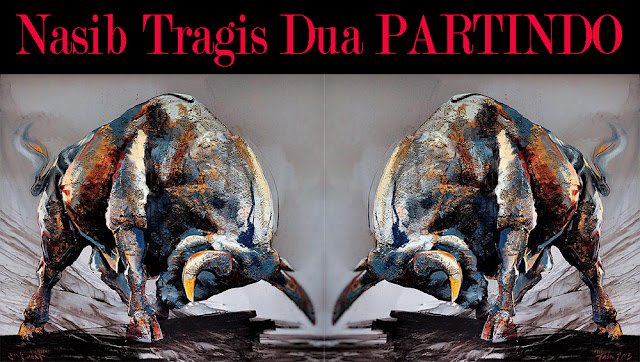 NASIB TRAGIS DUA PARTINDO / PARTINDO / CATATAN MARHAENIS / CATATANADIWRITER.BLOGSPOT.COM