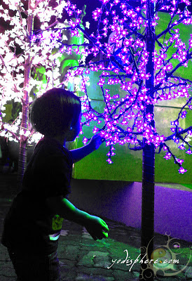 A child amazed by colorful Christmas Lights