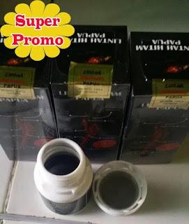 Minyak lintah hitam papua asli rejang lebong
