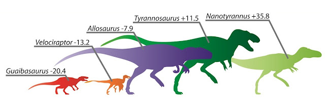 Paleontologists link leg length to running ability in bipedal carnivorous dinosaurs