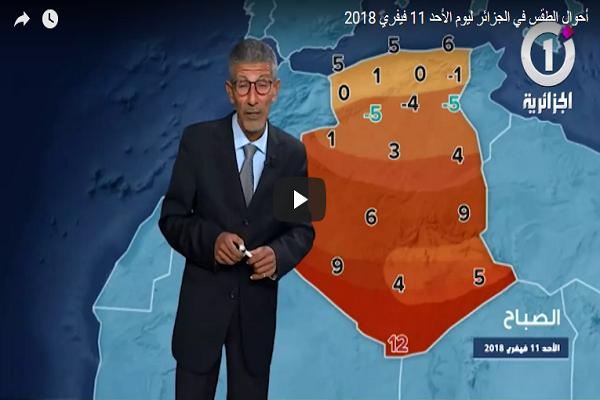 بالفيديو: نشرة جوية تحذر من أمطار رعدية مصحوبة بموجة برد
