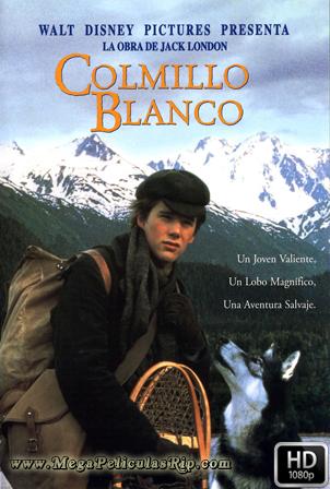 Colmillo Blanco [1080p] [Latino-Ingles] [MEGA]