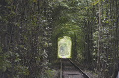 The Tunnel of Love, Klevan