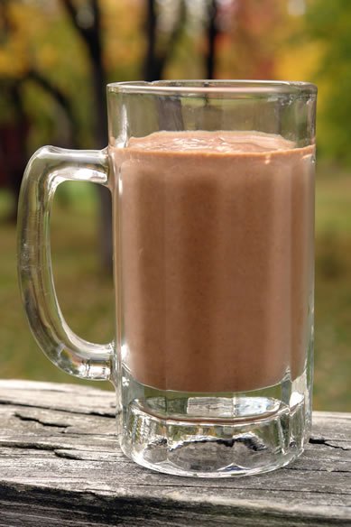 Dairy-Free Diet-Milkshake Recipe : Chocolate Pumpkin Spice and Gluten-Free