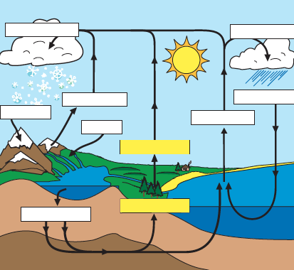 "Search Results for ""Water Cycle Diagram Worksheet Blank ..."