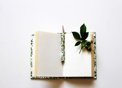 Quieres escribir un libro y darlo a conocer