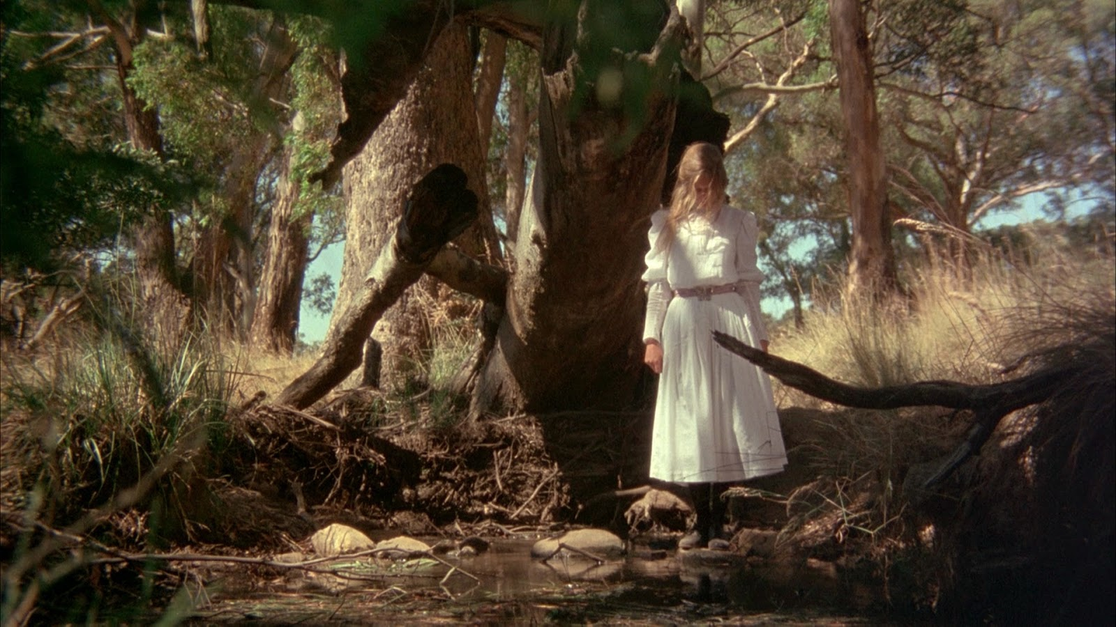 essay on picnic at hanging rock Buy picnic at hanging rock: read 56 movies & tv reviews - amazoncom.