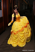 Belle's Ball Gown Tutorial by Meazara