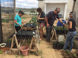 IFPB Campus Picuí se destaca com ações em prol do meio ambiente