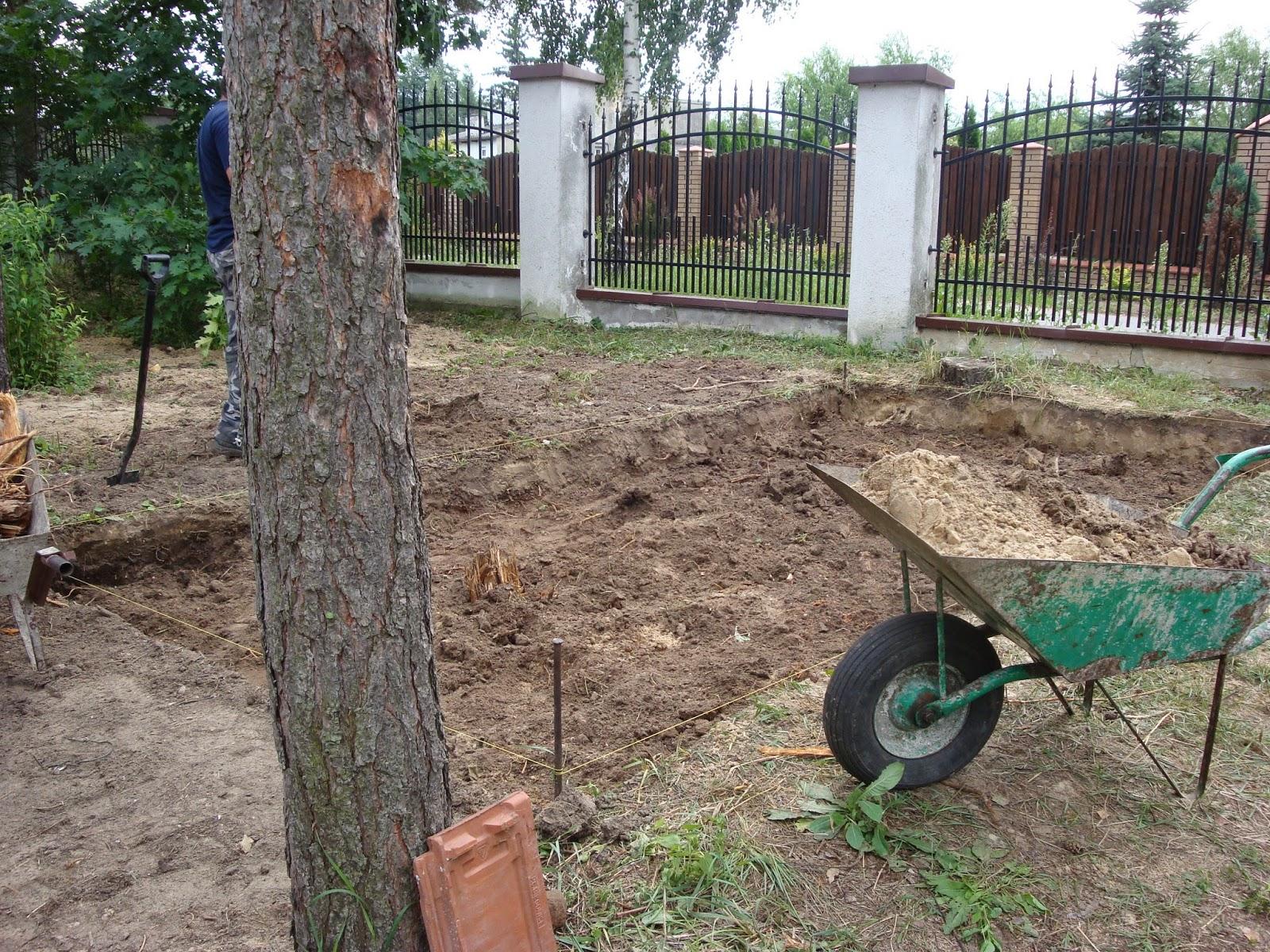 warzywnik w lesie sosnowym
