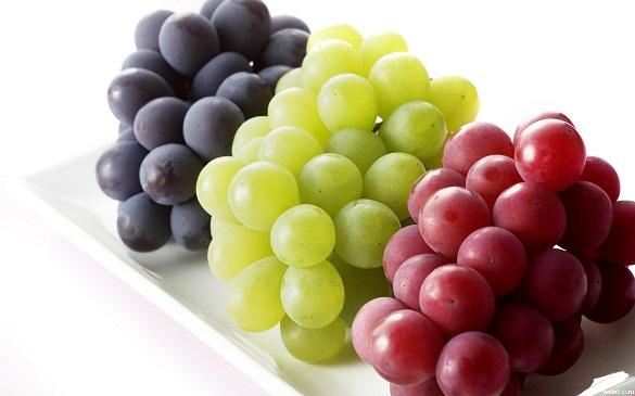 anggur dikenal sebagai buah yang kaya kandungan nutrisi seperti serat vitamin dan beberapa jenis lainnya namun tidak hanya
