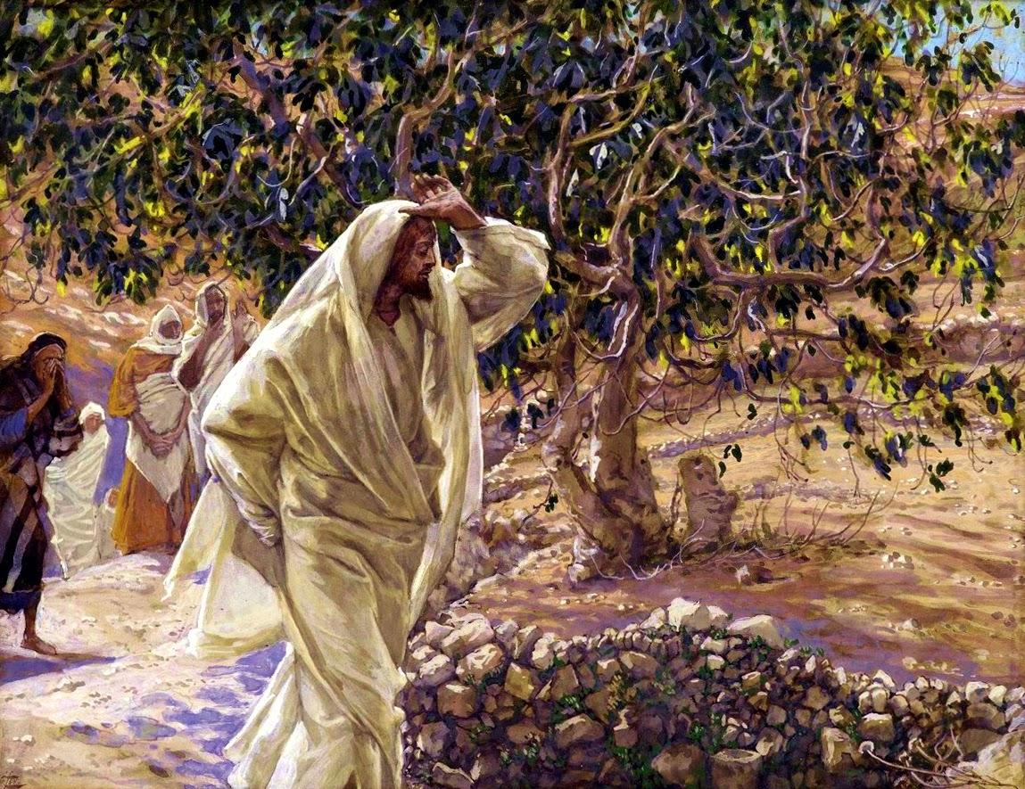 Ilustração de Jesus amaldiçoando a figueira